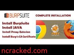 Burp Suite Pro 2020.12.1 Crack