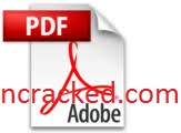 Adobe Acrobat Pro DC 2021.001.20155 Crack